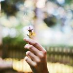 3 tipy jak využít rituály v podnikání